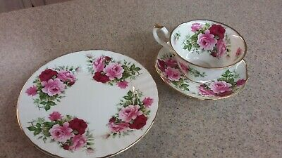 Royal Patrician teacup plate saucer Summertime Rose pattern