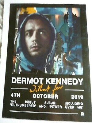 Dermot Kennedy Without Fear Original  Promotional Poster New Unused