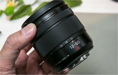 Panasonic Lumix 12-60mm Zoom Lens for micro-fourthirds - yes, another!