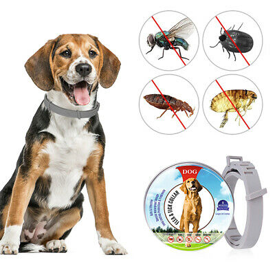 Flea Collar Dogs Pet Flea and Tick Control Collar f/ 8Month Dogs Protection T6G8