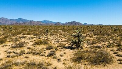 ☀️ RARE 40 ACRE RANCH MOHAVE ARIZONA RV's & MOBILES ALLOWED NO HOA PERFECT ROAD