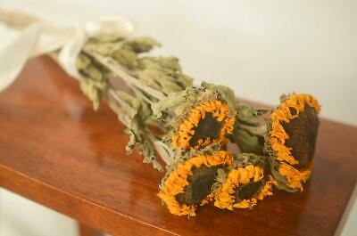 Dried Sunflower 3-4 Stems with Beautiful Decoration Wrapping