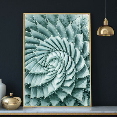Botanical Wall Art Plant Leaves Flowers Tropical Photo Print Poster A4 A3 A2 A1