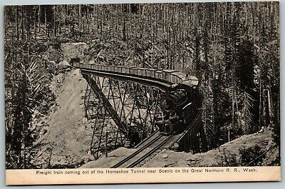Great Northern RR Horseshoe Tunnel Freight Train Washington Railroad Postcard D9