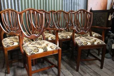 A Vintage Set of Ten Cedar Hepplewhite Style Chairs including Two Carvers