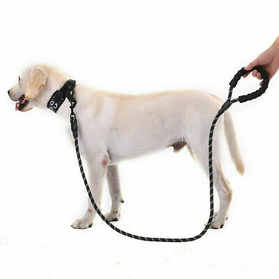 Climbing Rope Dog Leash Rope Heavy Duty Standard Braided for Large Dogs Walking