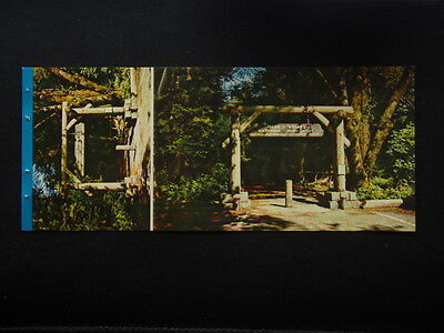 San Francisco Gateway To Muir Woods National Monument Postcard