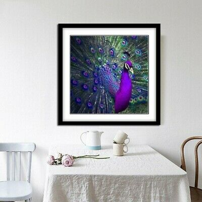Pfau 5D DIY Tier Diamant Malerei Stickerei Diamond Painting Kreuzstich Handwerk