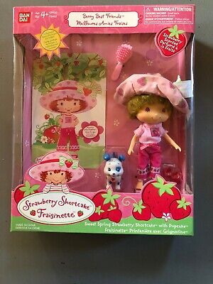 NEW Strawberry Shortcake Sweet Spring With Pupcake Berry Best Friends 2002