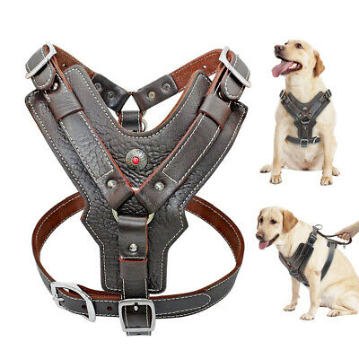 Medium Large Dogs Leather Harness With Handle Heavy Duty No Pull Vest Labrador