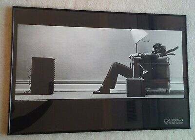 "Steve Steigman The Weaver Gallery, ""Blown away"" framed poster"