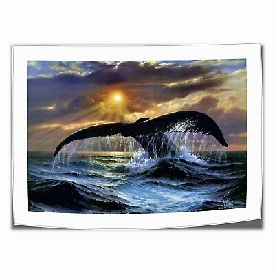 """16""""x24"""" Animal Whale Posters HD Canvas Painting Home Decor room Wall art Picture"""