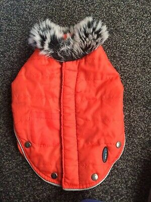 Small Dog /puppy Coat With Fur Collar From Ancol
