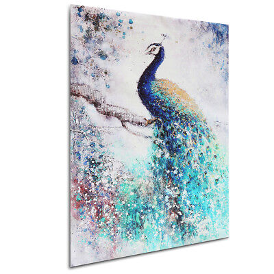 Peacock HD Unframed Canvas Print Painting Picture Poster Wall Art Decor