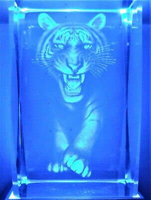 3D TIGER FACE GROWL CRYSTAL Laser Holographic+4 LED LIGHT BASE NEW GIFT BOXED