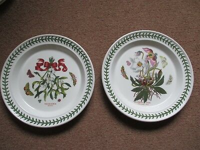 2 Portmeirion Christmas Dinner Plates