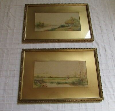 "Pair Antique Signed Watercolours Gilt Gesso Frame Edwardian  24"" X 18"""