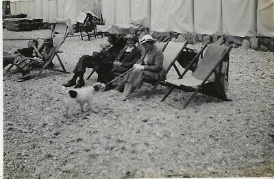 Vintage Old Photograph Men Ladies Hats Deckchairs Terrier Dog Anstey's Cove 1935