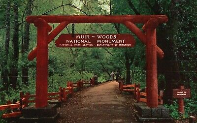 Entrance Muir Woods National Monument, Vintage, Stamped Postcard A41