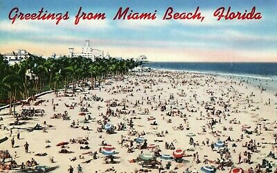 Greetings from Miami Beach, Florida, Good for Sunbathing, Vintage Postcard A39