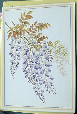 NATURA DESIGNS WISTERIA BY FRANCES FRY DRAWING BIRTHDAY GREETINGS CARD 1980s.