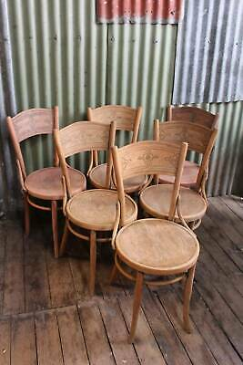 A Rustic Set of Six Vintage Bentwood Chairs with Embossed Seats & Backs