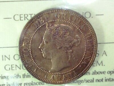 1901 Canada Large Cent -  Iccs Certified - Beautiful Queen Victoria Coin