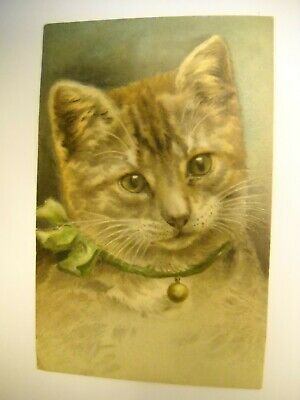 CAT PORTRAIT Victorian embossed CARD from scrapbook CHROMOLITHO ribbon collar