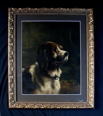 Beautiful Large Antique19th Century English Oil on canvas  Potrait of a Spaniel.
