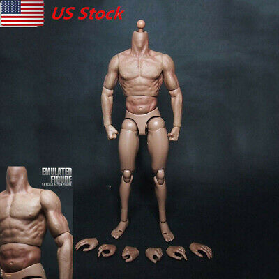 Zctoys Muscle arm perfect BODY Similar to HT Flexible 1//6 FIGURE