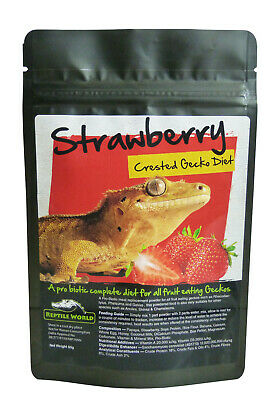 Reptile World Strawberry Gecko Food - Complete Diet - Crested Gecko Food