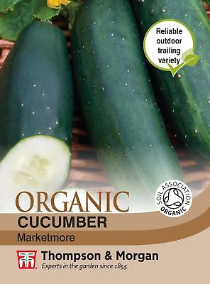 Cucumber Sherpa F1-5 Seeds Unwins Pictorial Packet