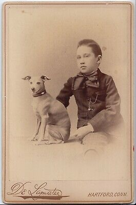 1880s YOUNG BOY & HIS WHIPPET GREYHOUND DOG PUPPY Cabinet Card Photo HARTFORD CT