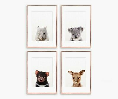 A4 Nursery/Baby/Kids Australian Animals Wall Prints Koala Kangaroo Wombat