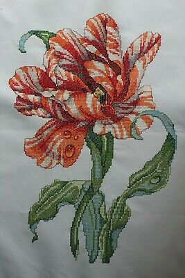 Beautiful Triumph Red and White Striped Tulip Cross Stitch Complete Finished