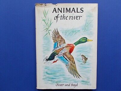 ## Animals Of The River - Marcelle Verite - English Edition 1963 - Hc Dj