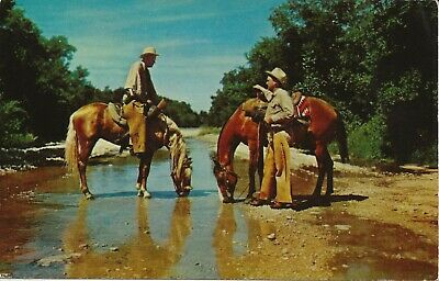 Arizona AZ Phoenix  Cowboys  Horses On Trail  vintage collectible postcard