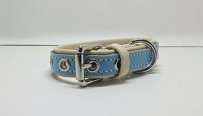 Small Genuine Baby Blue on Cream leather dog collar with Nickle plate hardware
