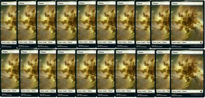 20x PLAINS FULL ART LAND THB MTG Theros Beyond Death Basic Land