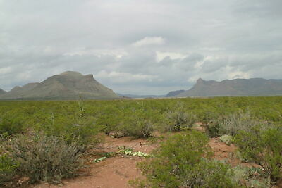 Buy Now, 10 Acres Finlay Texas Mtns,Views, Just North Of Interstate 10