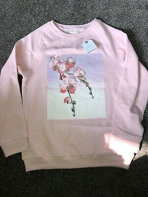 Next Girls Age 12 Years Light Pink Sweater Jumper Flower Glitter BNWT