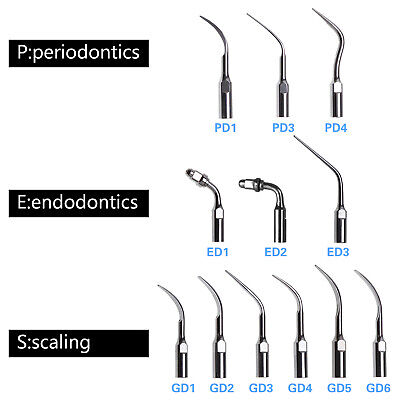 Dental Ultrasonic Scaler Endo Scaling Perio Tip Fit SATELEC DTE G P E 12 Types