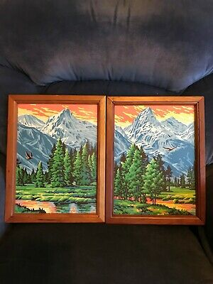 Vintage Paint By Numbers - Mountains, Eagle, Summer, Stream