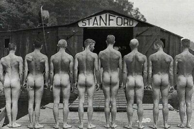 Postcard Print / 1920s Stanford Nude Rowers / Gay Interest