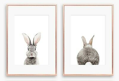 Set of 2 x A4 Nursery/Baby/Kids Room Photo Wall Prints Rabbit Front and Back