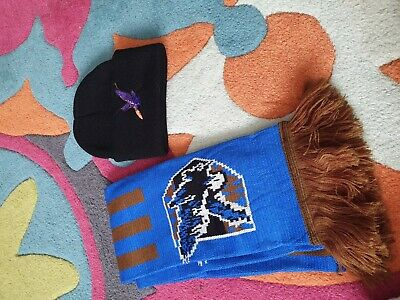 Harry potter ravenclaw scarf and hat