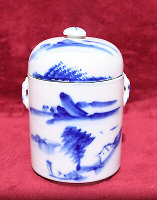 Rare Antique Vintage Chinese Blue & White Two Lidded Ginger Jar Tea Caddy