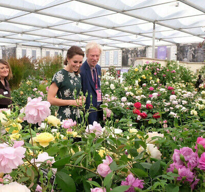 1 x RHS Chelsea Flower Show Gala Preview tickets 18th May *Exclusive Monday*