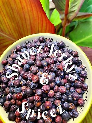 Juniper Berries 100g  - Premium Quality Shanez Herbs and Spices