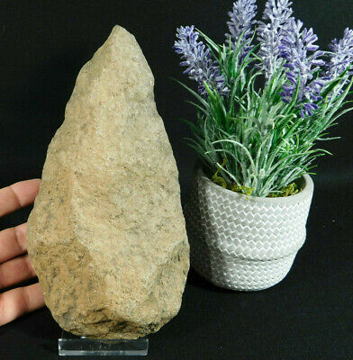 A BIG! ONE Million Year Old Early Stone Age ACHEULEAN HandAxe Mauritania 1215gr